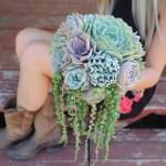 Succulent Bouquets Wedding Succulent Favors For Sale Bulk Succulents