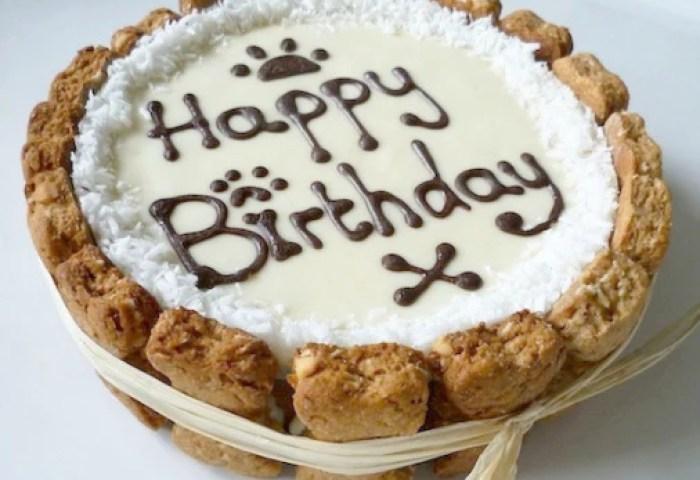 Doggie Patisserie I Happy Birthday Cake Doggie Patisserie