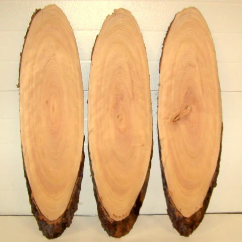 2 Inch Thick Wood Slices