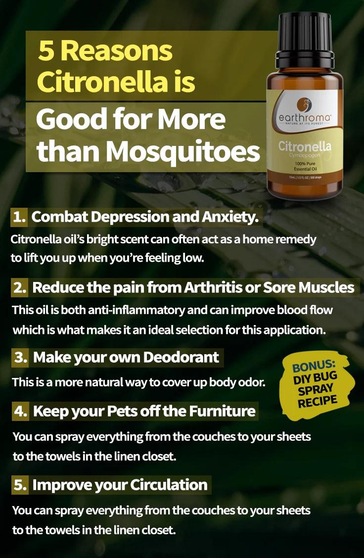 5 Citronella Essential Oil Uses & Bug Spray Recipe ...