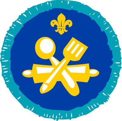 explorer scout activity badges
