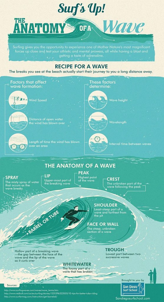 The Anatomy of a Wave, Surf's Up Infographic