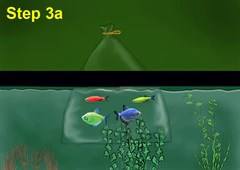 glofish set up and