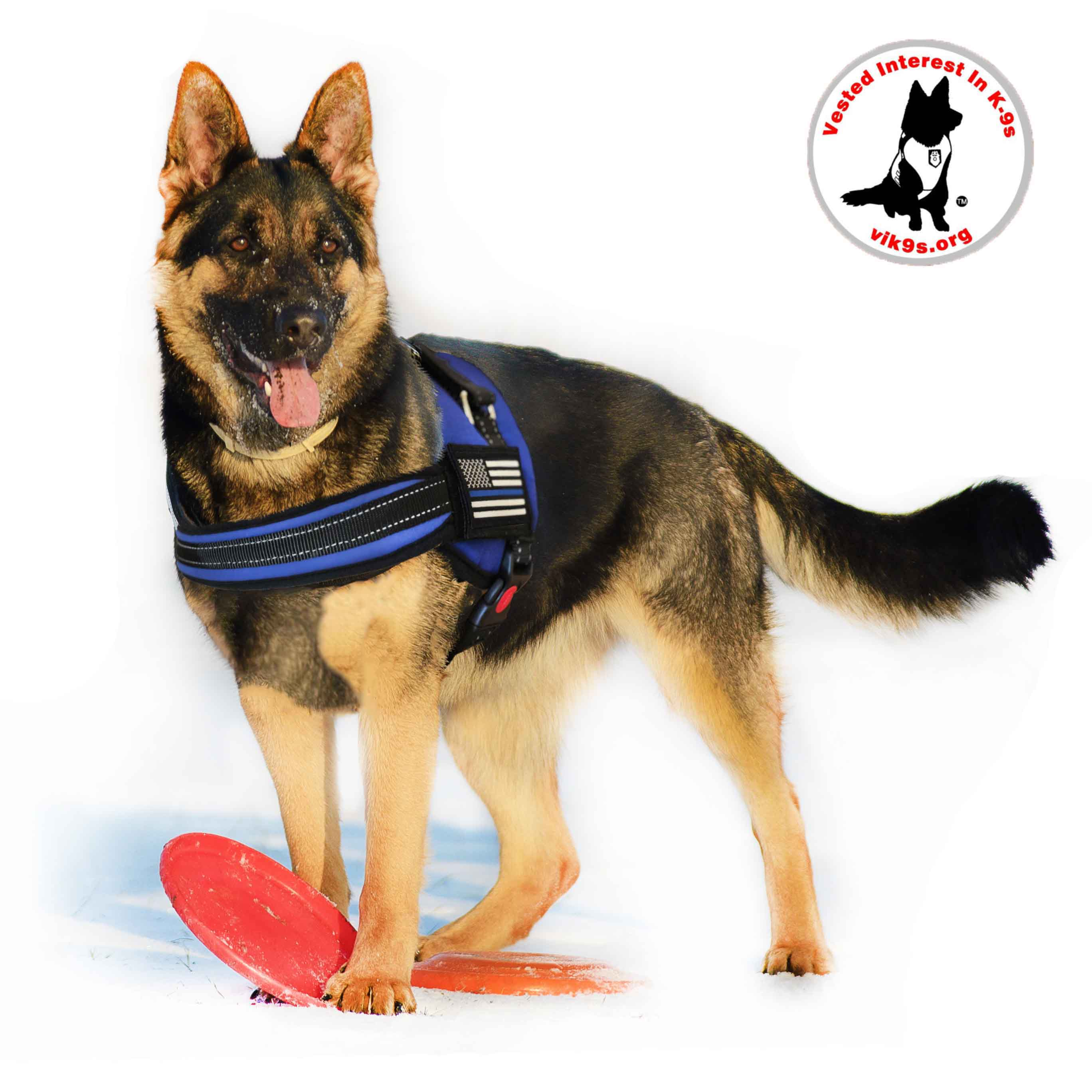thin blue line dog harness includes thin blue line american patch thin blue line usa [ 2736 x 2736 Pixel ]