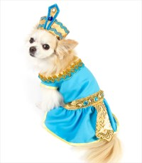 Cleopatra Dog Costume  G.W. Little