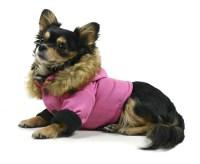 Dog Jacket - Eskimo Coat  G.W. Little