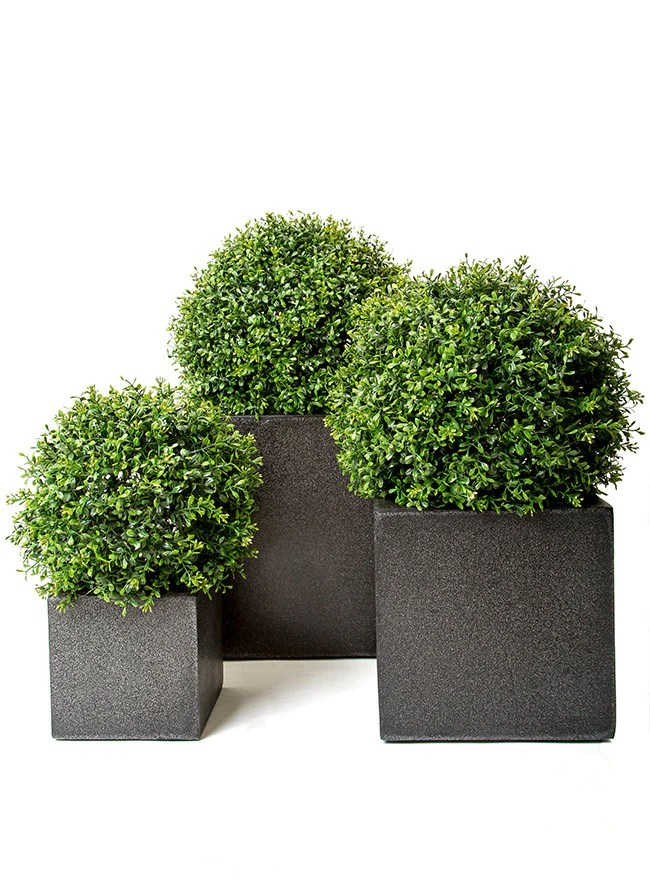 Tall Trough Planters Uk