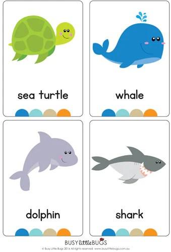 Ocean Flash Cards Busy Little Bugs