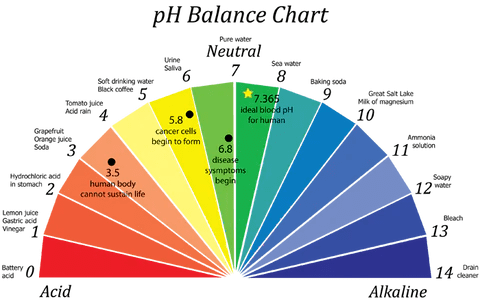 Human blood and what is considered your natural body ph consists of  very narrow range between below or above this means you may also how does alkaline water affect tds invigorated rh invigoratedwater