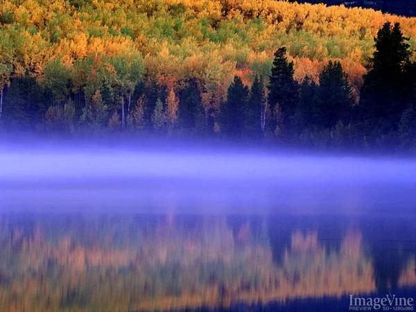 Maple Leaf Wallpaper For Fall Season God S Creation Fall Backgrounds Imagevine