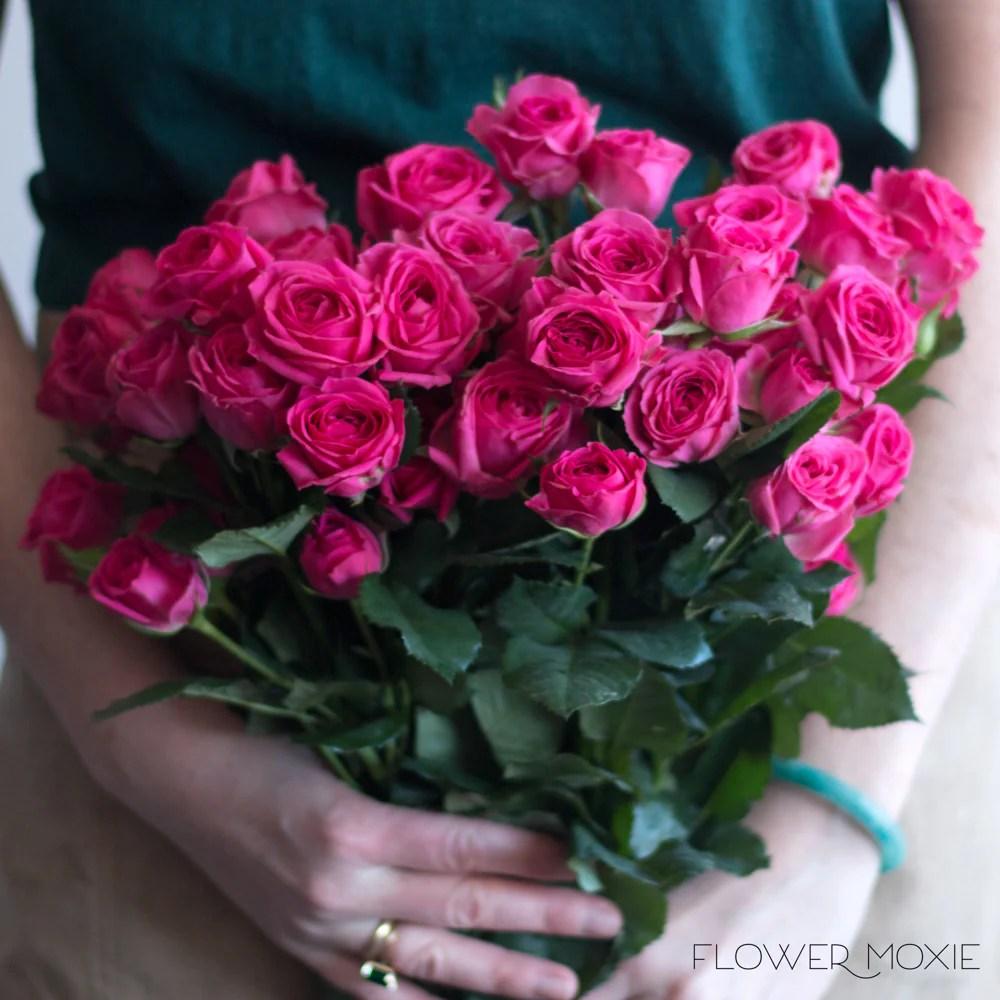 spray roses bulk fresh