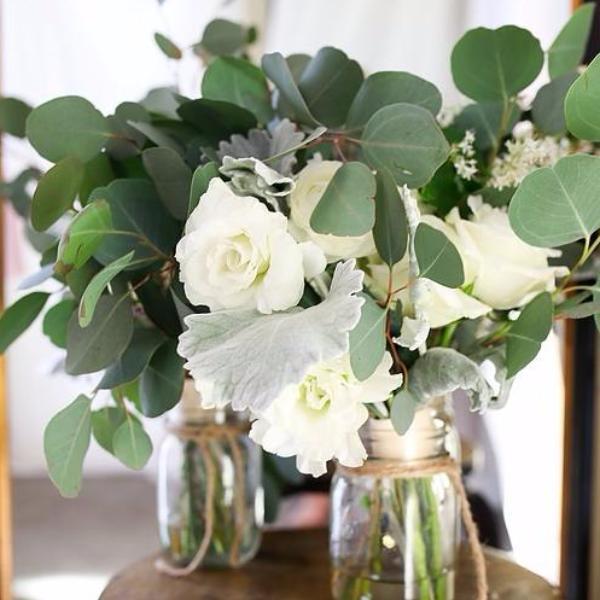Silver Dollar Eucalyptus  Flower Moxie