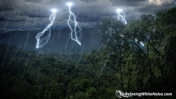 3d Laser Wallpapers Rain Forest Thunder Amp Rain Sleep Sounds Mp3 Relaxing