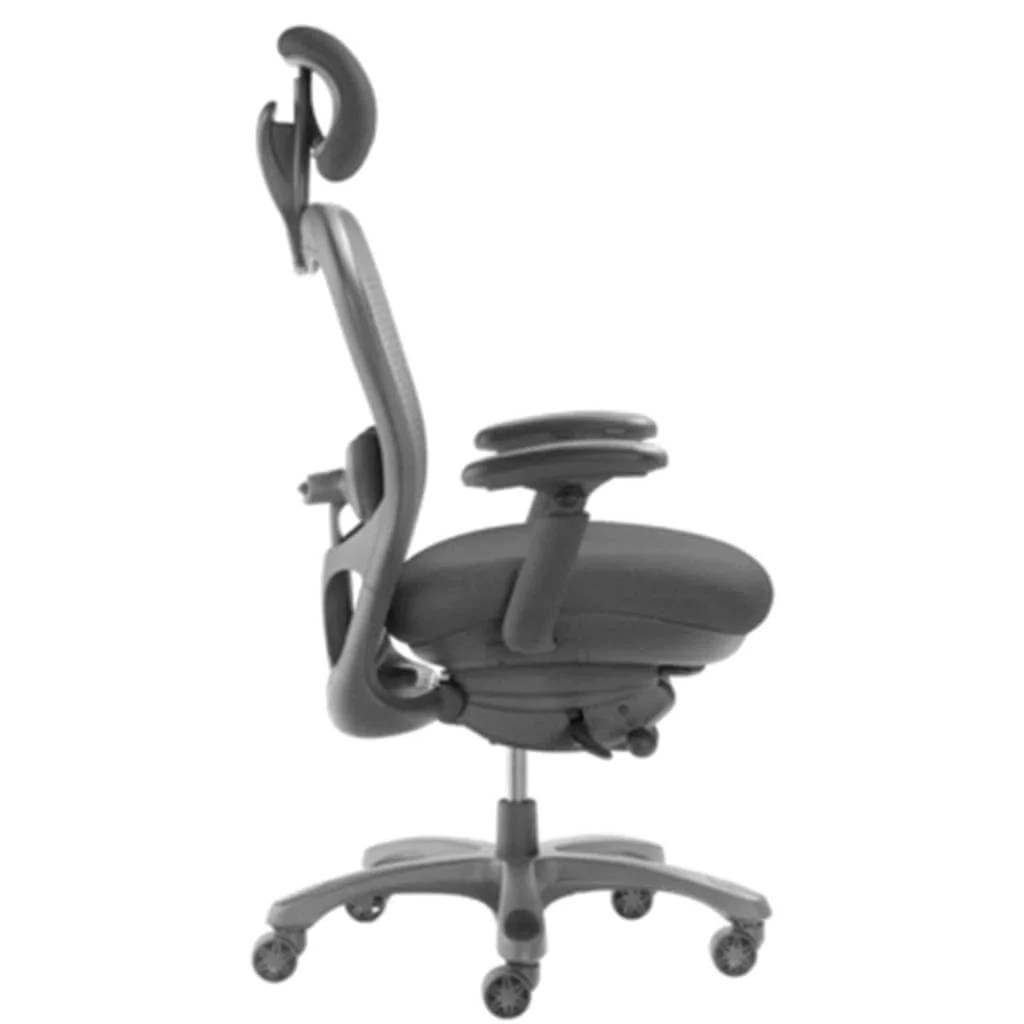 ergonomic chair description office buy cxo mid back executive with headrest 6200d sithealthier com