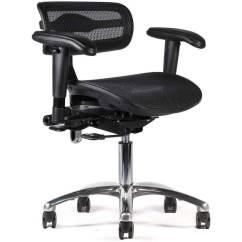 Ergonomic Chair Justification Pier 1 Papasan Ergolab Mesh Active Tilt Black Task Sithealthier