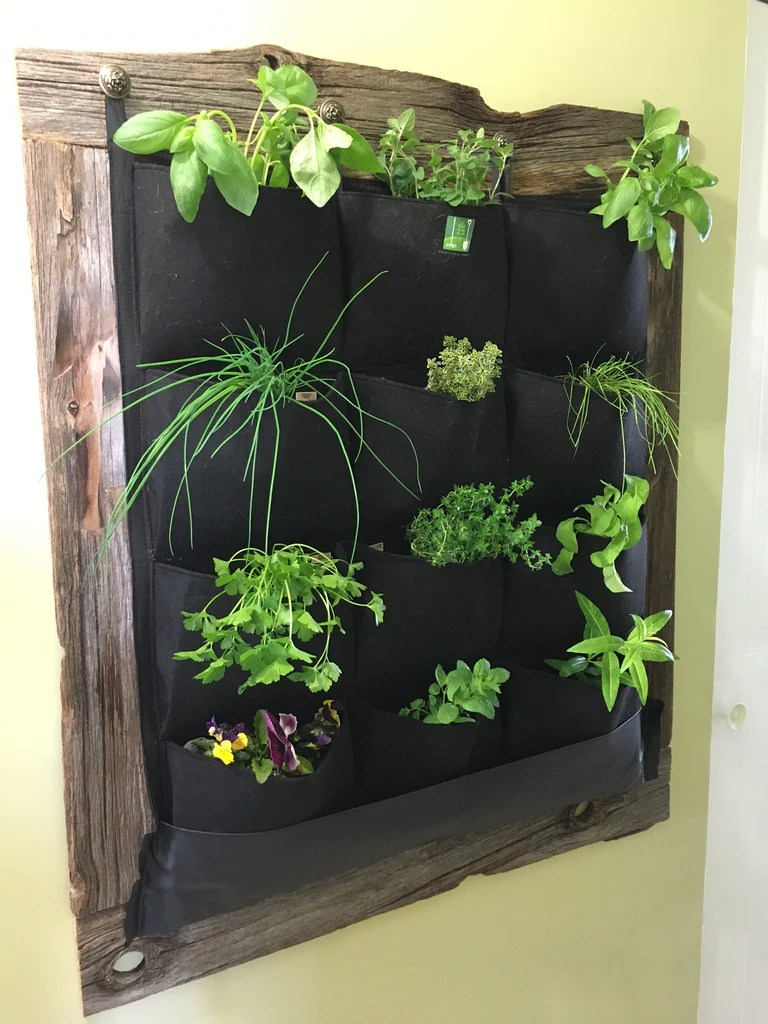 12 Pocket Indoor Waterproof Vertical Living Wall Planter Www Delectablegardenshop Com