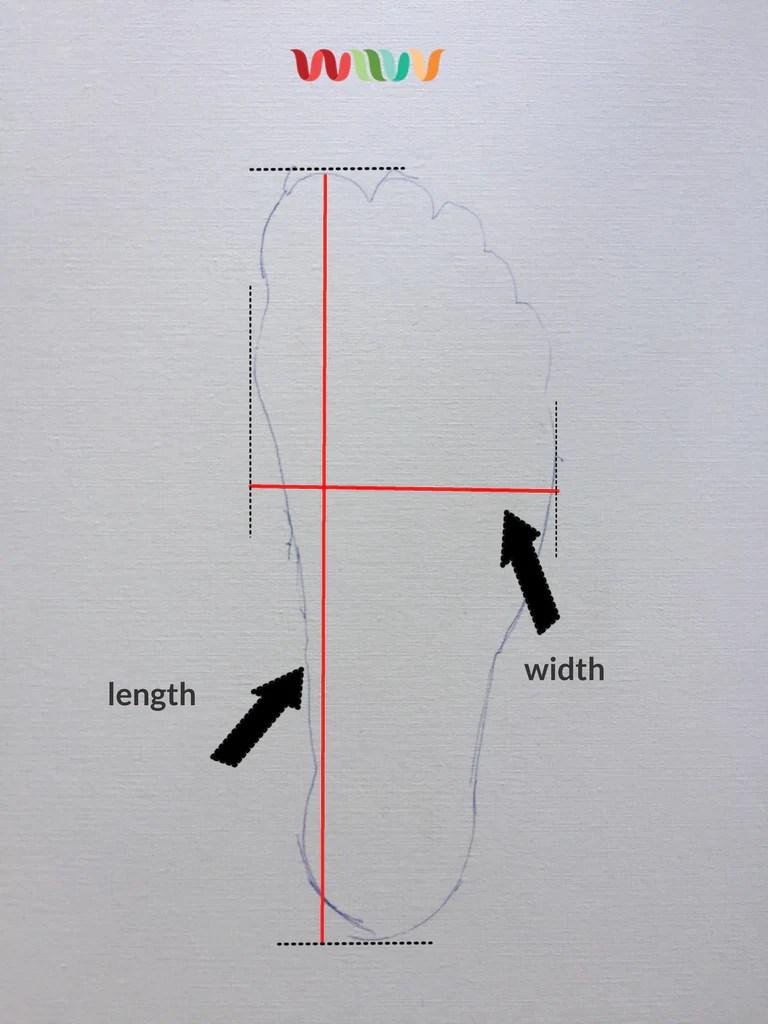 hight resolution of shoe width chart