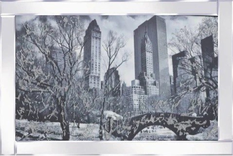 Central Park Liquid Glass Wall Art Picture With a Mirror