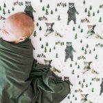 Baby Boy Crib Bedding Caden Lane