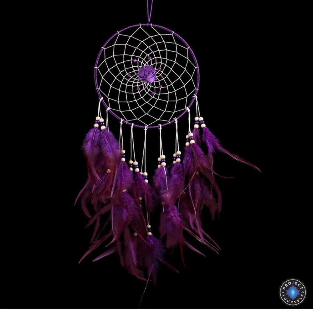 lovely purple rose dream