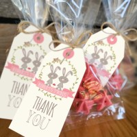 33 Baby Shower Ideas For Twins : Twin Baby Shower Themes ...