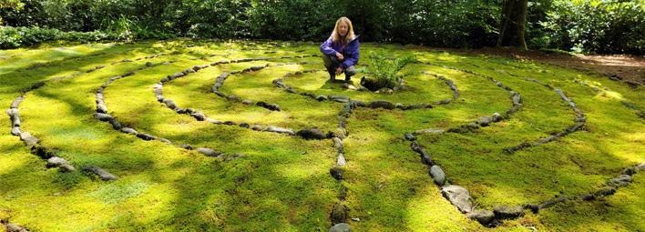 mountain moss - experts