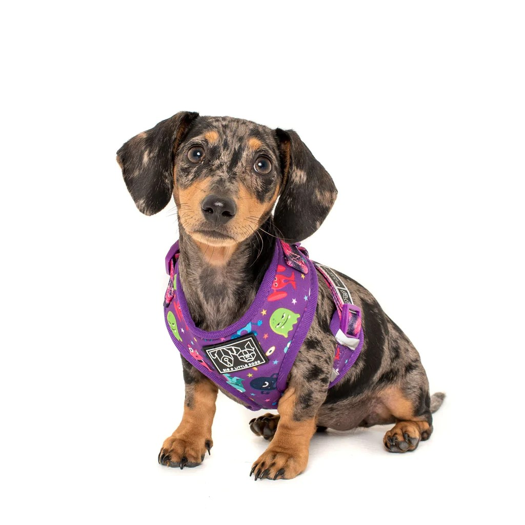 adjustable dog harness for big and small dogs monster mash cartoon monsters  [ 1024 x 1024 Pixel ]