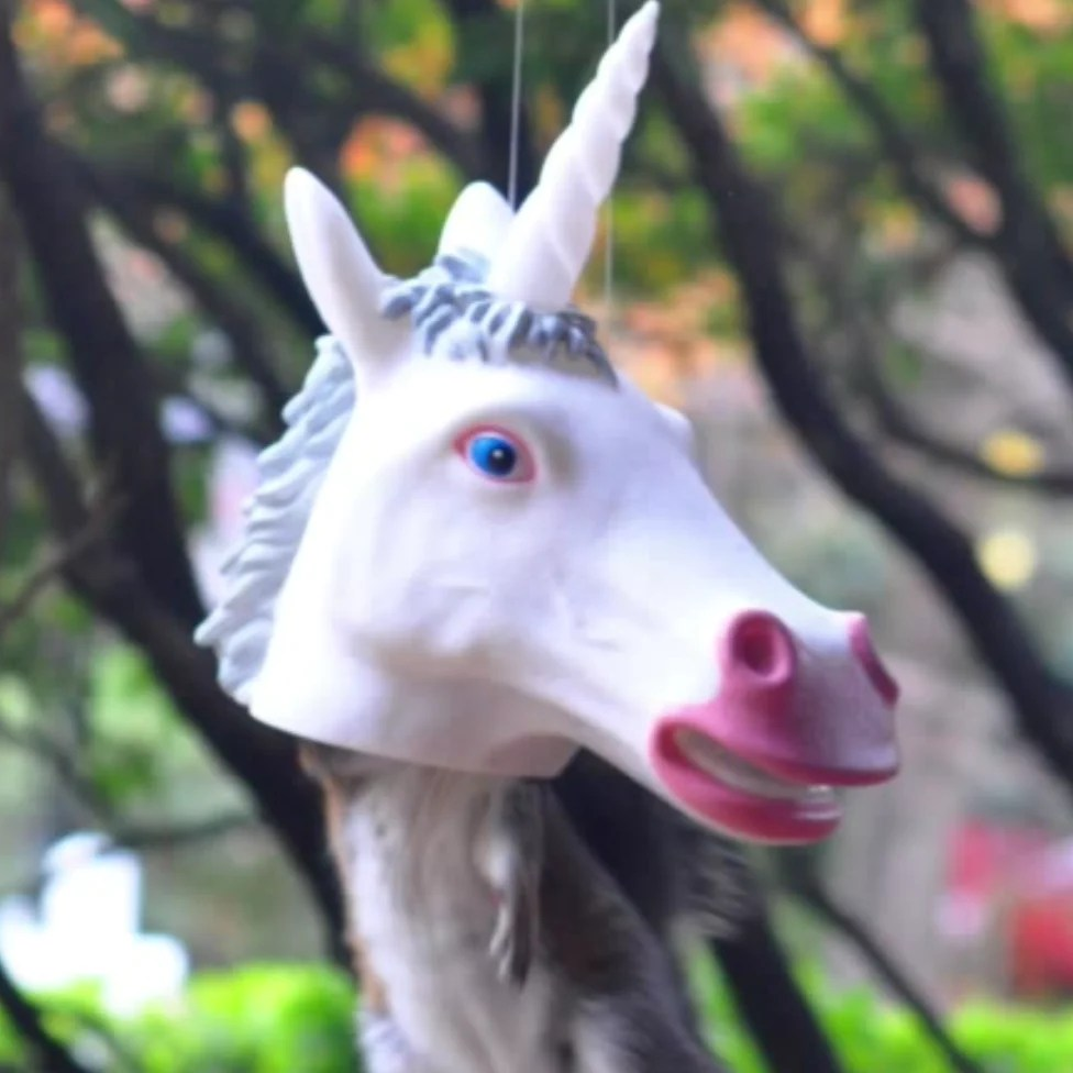 Funny Unicorn Squirrel Feeder Video Magical Squirrel