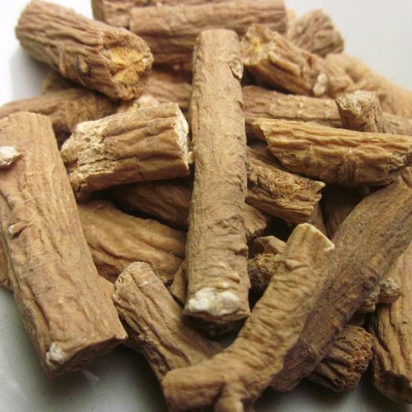 Isatis ROOT Extract – Woodland Essence