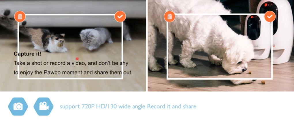 Pawbo+ Smart Pet Camera Capture the moment