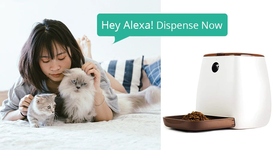 Asian Girl Voice Control The SmartPaw Ultimate Smart Pet Feeder