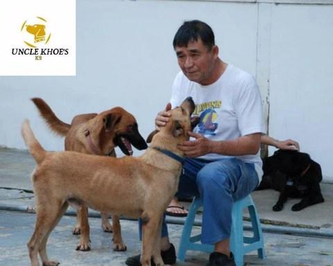 Uncle Khoe K9 Shelter
