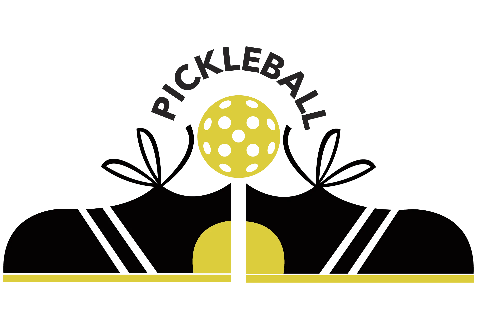 hight resolution of pickleball xtra