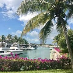 Turtle Cove Marina Turks & Caicos
