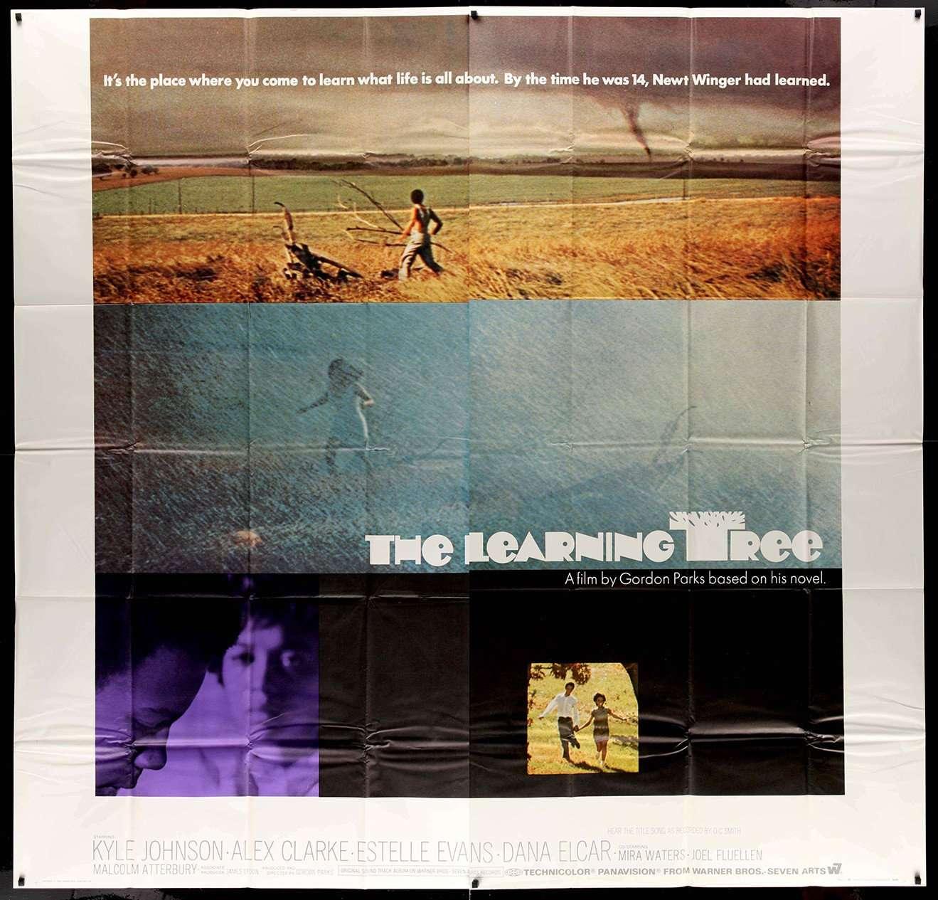 Learning Tree 1969 Original Six-sheet Movie Poster