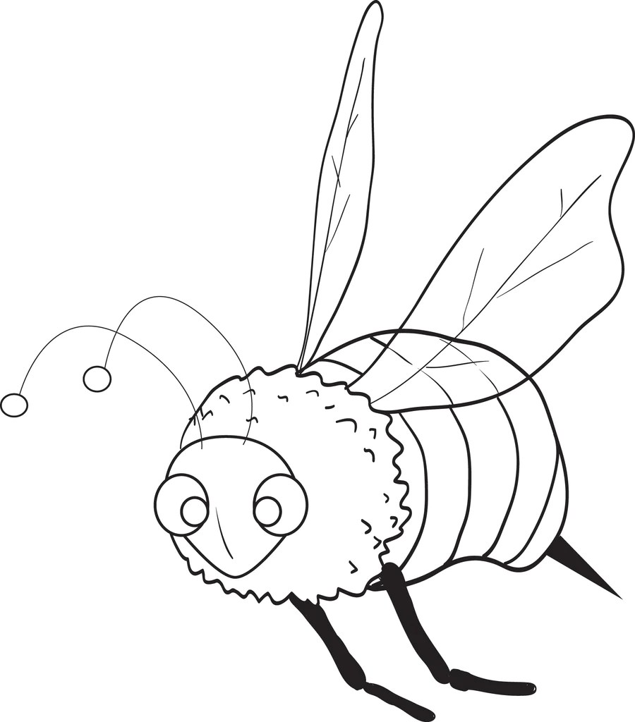 Printable Bee Coloring Page For Kids Supplyme