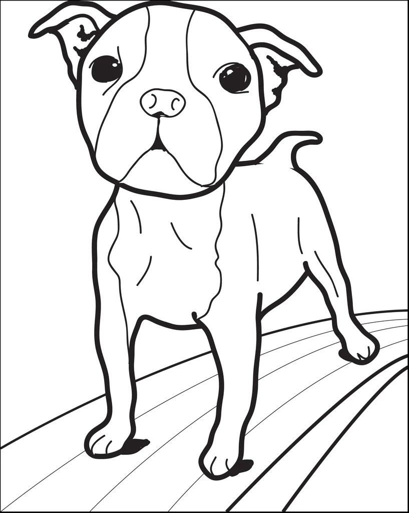 free printable small dog coloring page for kids – supplyme