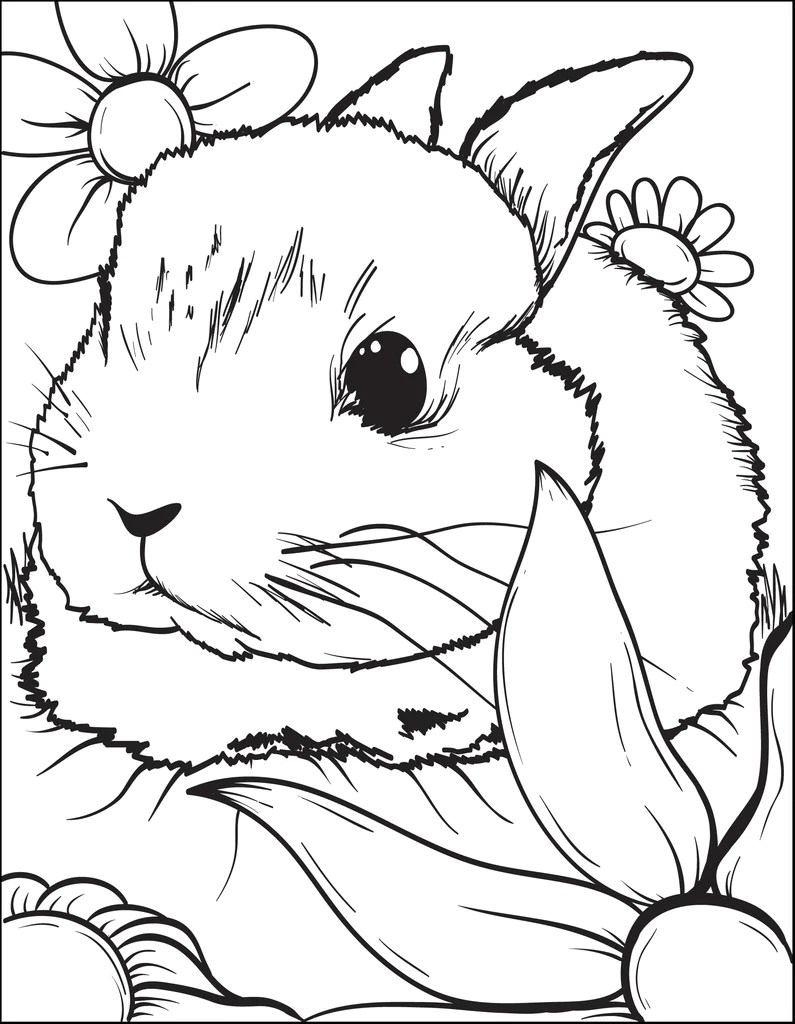 Printable Bunny Rabbit Coloring Page For Kids 3 Supplyme