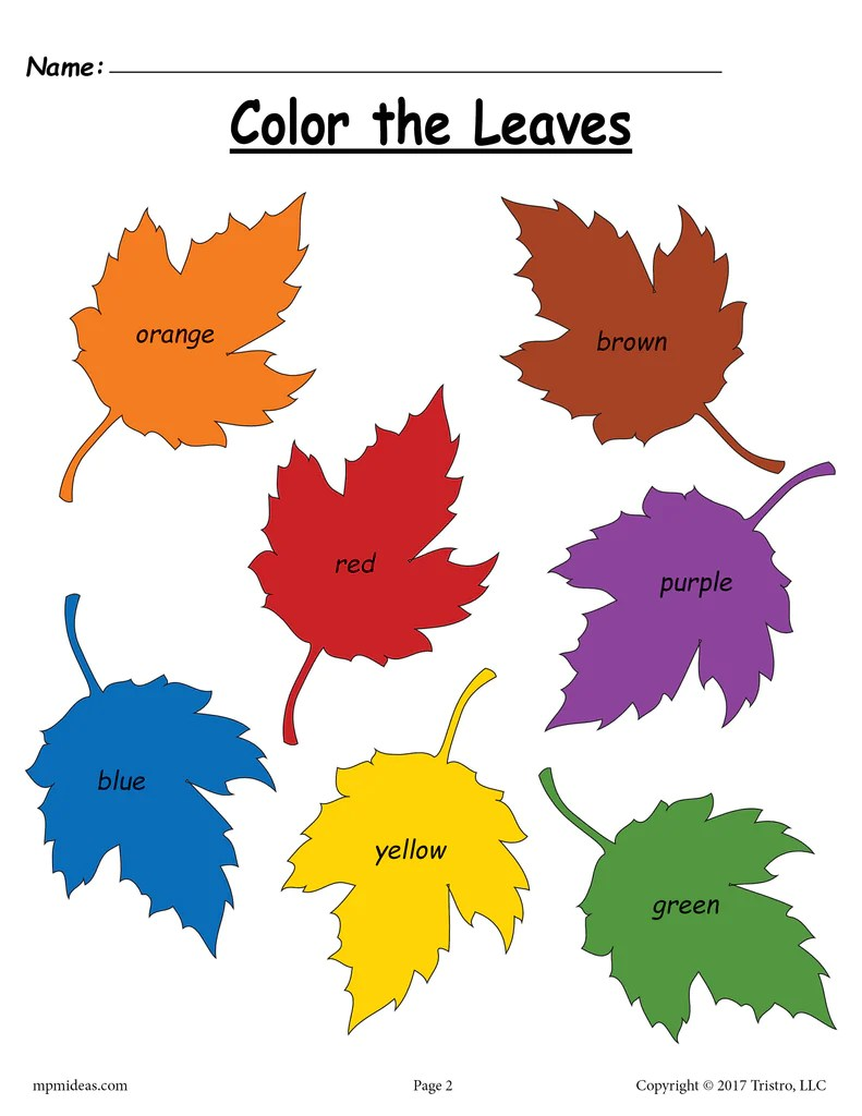 medium resolution of Fall Leaf Color Words Worksheet! – SupplyMe