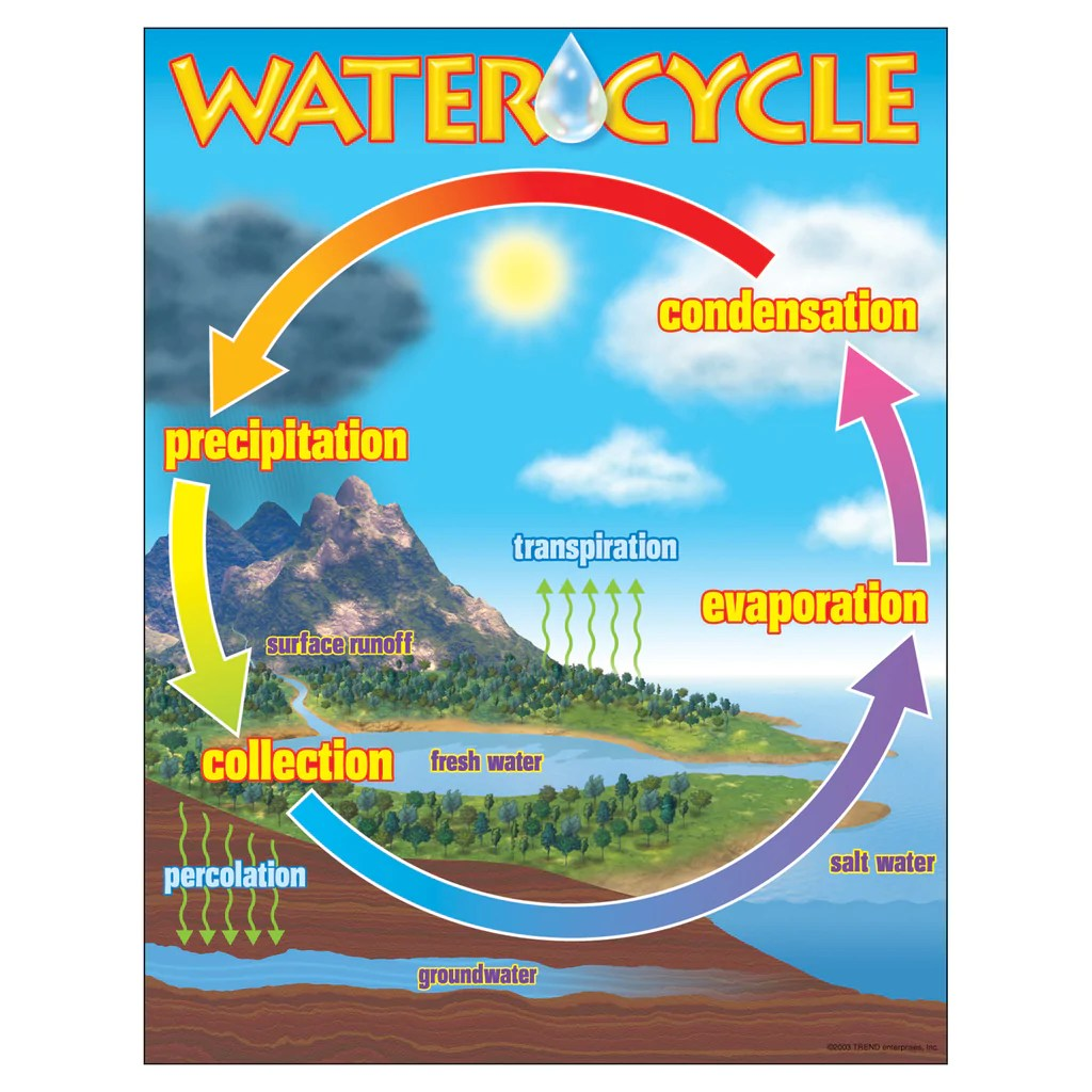 Trend Enterprises The Water Cycle Learning Chart   T-38119 – SupplyMe [ 1024 x 1024 Pixel ]