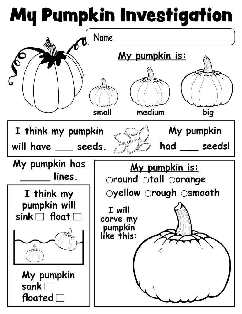 Pumpkin Investigation Worksheet - Printable! – SupplyMe [ 1024 x 791 Pixel ]