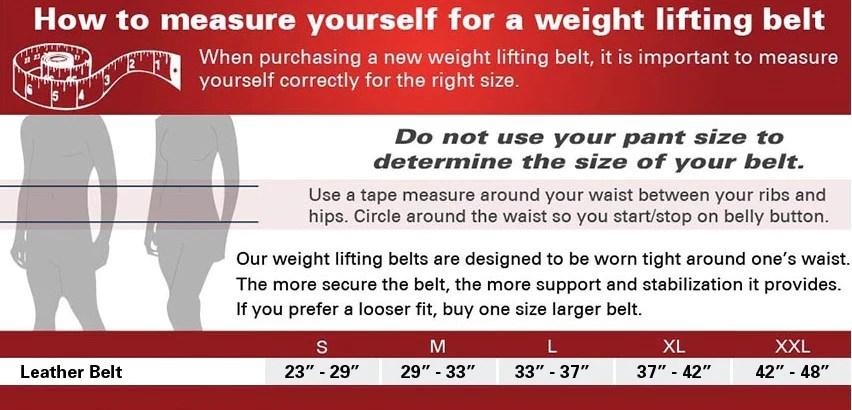 Specifications also harbinger leather weight lifting belts dynamic fitness  strength rh mydynamicfitness