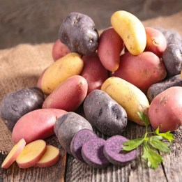 Image result for Growing demand for organic potatoes encourages breeding