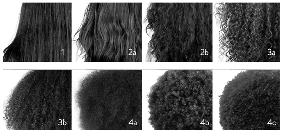 Use this chart to determine your curl pattern hair types can be ided into categories straight wavy curly and kinky also how figure out type  all shades covered rh allshadescovered