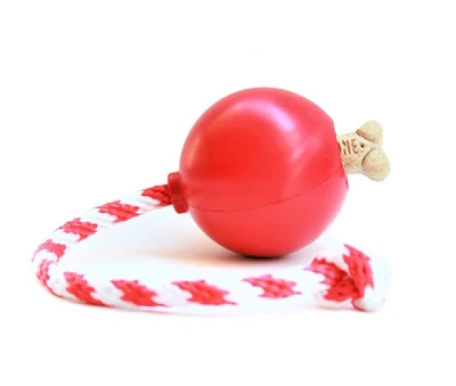 Cherry Bomb Rover Pet Products