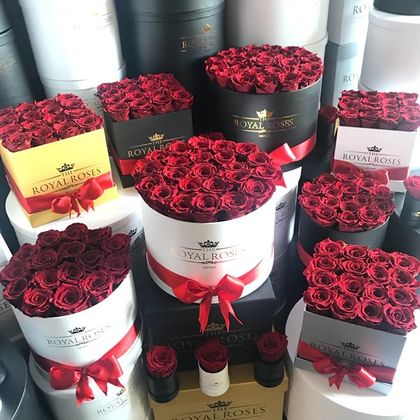 Real luxury Roses which Last more than 1 year  The Royal