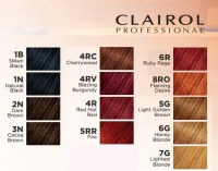 Clairol Textures & Tones  Beautylicious