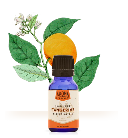 tangerine essential oil aroma