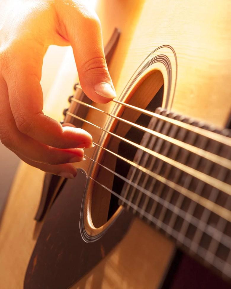 musical instruments, nz music shop | buy music online – shearer's