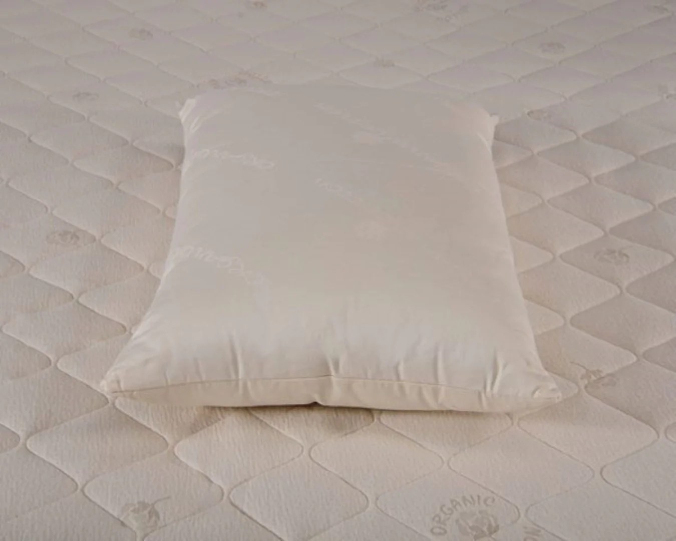 organic cotton pillow